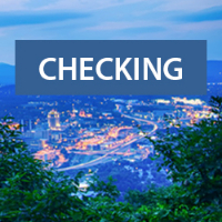 Text: Checking; Background: Roanoke City skyline at night