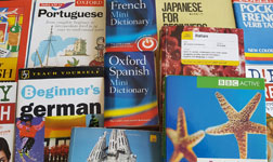 Collection of foreign language dictionaries