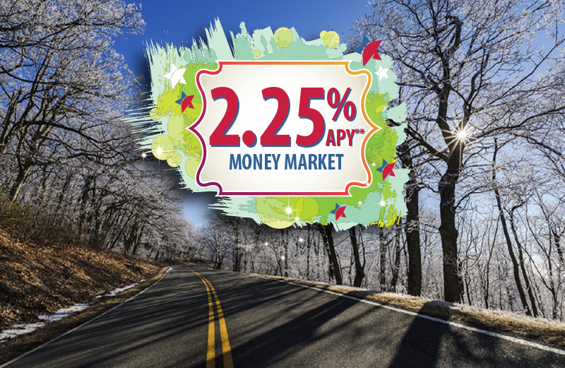 2.25% APY* on Money Market. Exclusive offer for Stash Checkers only.